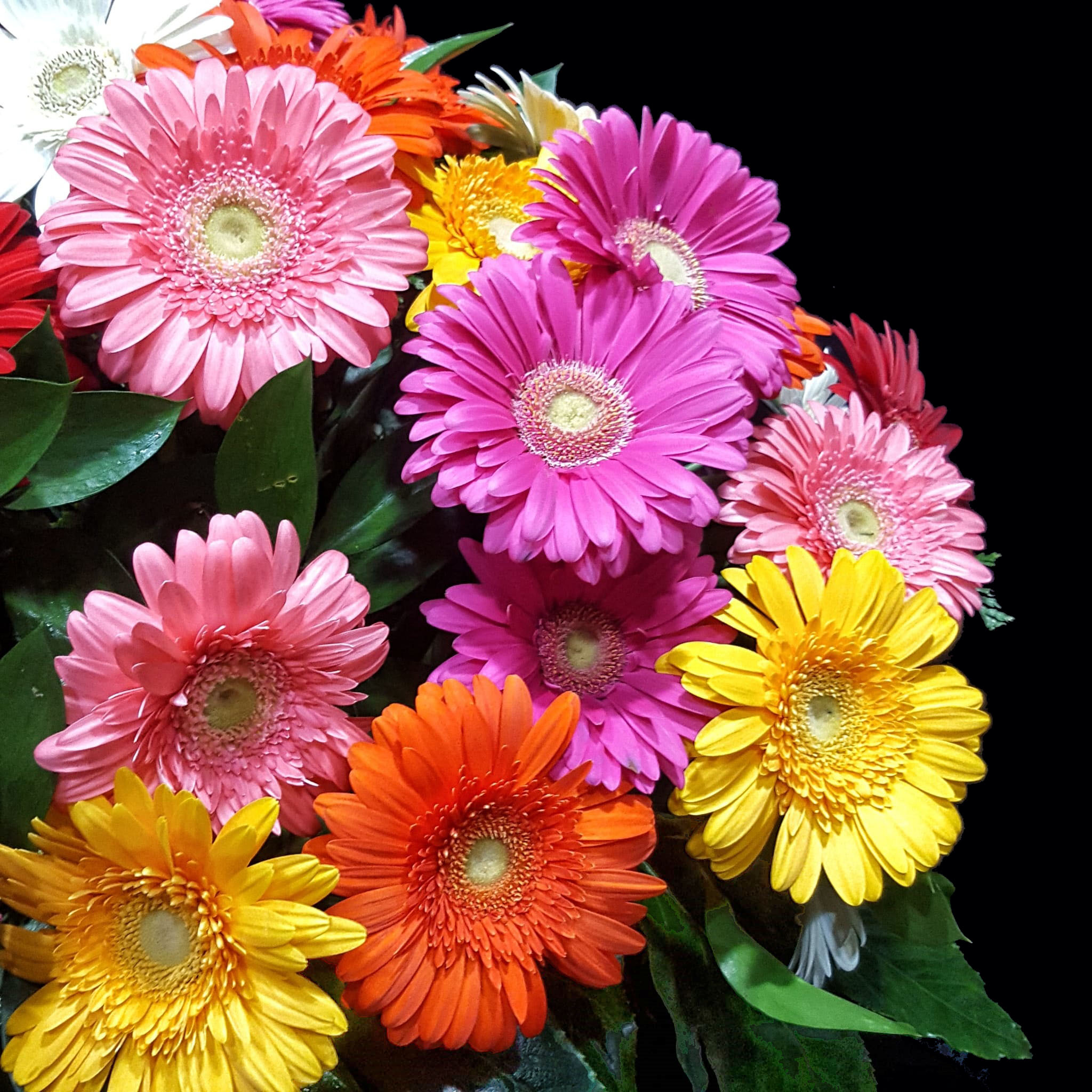 Les Bouquets Fleuristerie - Ramos de flores naturales